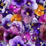 Groot rond tafelzeil viooltjes (160cm)_