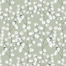 Tafelzeil katoenplant