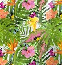 Tafelzeil tropische vlinder soorten