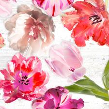 Groot rond tafelzeil tulpen (160cm)