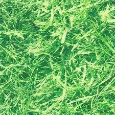 Tafelzeil gras (foto print)