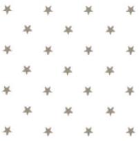 Rond tafelzeil sterren zilver op wit (140cm)