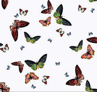 Doorzichtig tafelzeil vlinders