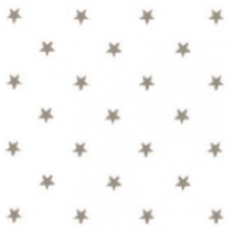 SALE tafelzeil sterren zilver op wit 105x140cm